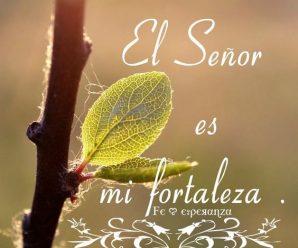 Imagenes Con Mensajes De Fortaleza De Dios