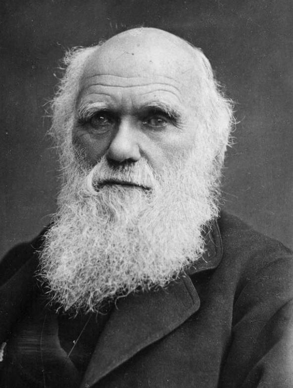 Significativas frases para pensar Charles Darwin