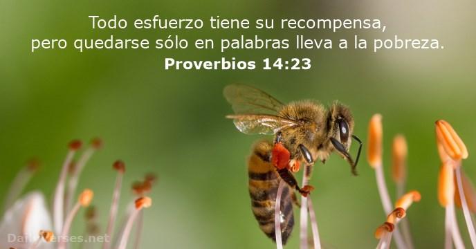 Imagen con el proverbios-14-23