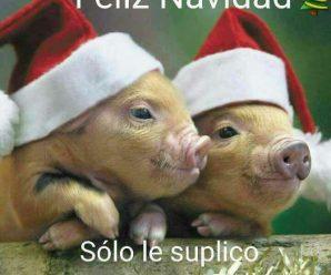 Imagen Divertida De Navidad Para Facebook