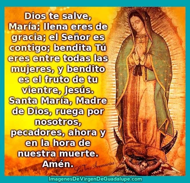Oracion De La Virgen De Guadalupe en imagen