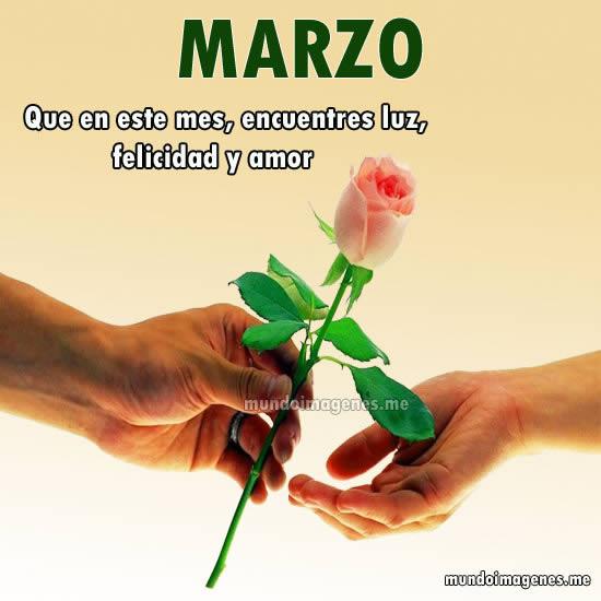 Imagen de una rosa para desea un feliz mes de marzo