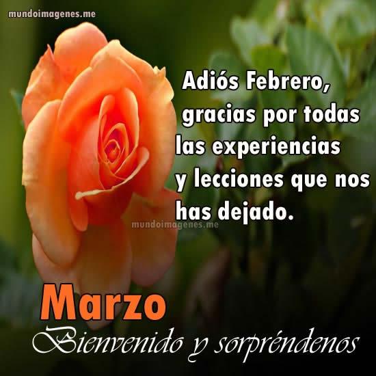 Imagenes de rosas para dar la bienvenida a marzo