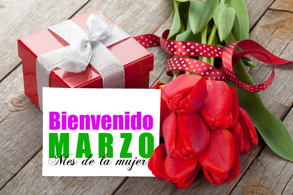 Imagenes con tulipanes bienvenido marzo mes de la mujer