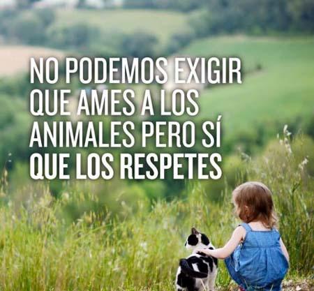 Frases sobre el respeto a los animales