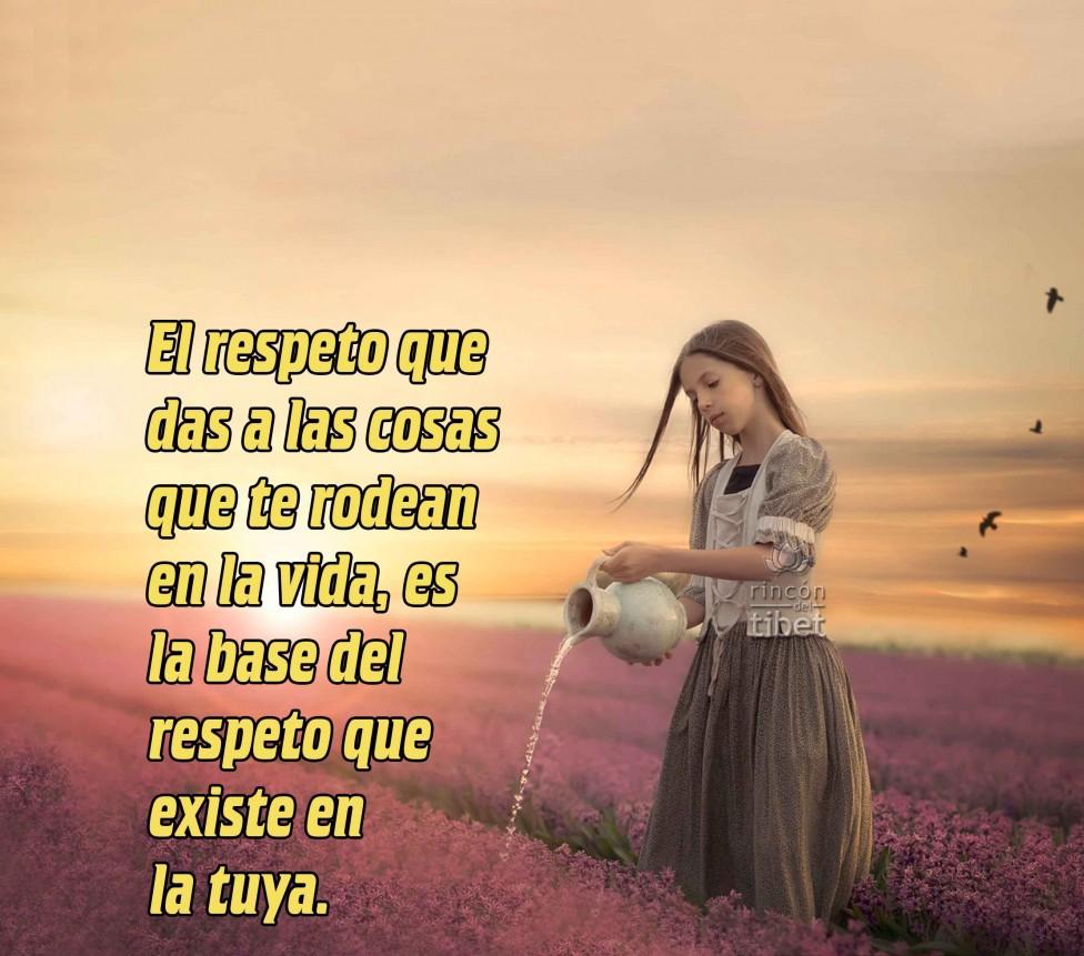 Mensaje sobre el respeto a las cosas que nos rodean en la vida