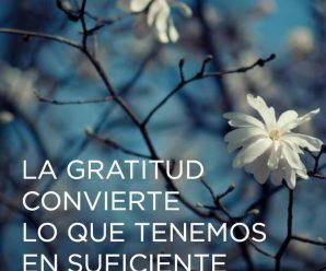 Imágenes Con Mensajes De Gratitud Para Reflexionar