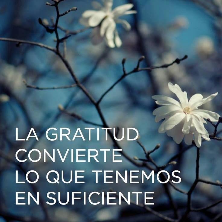 Reflexiones para Compartir Sobre La Gratitud