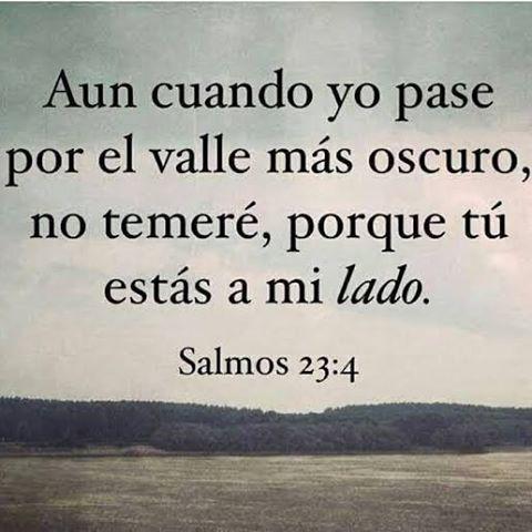 Imagenes De Salmos 23